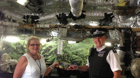 Officers set up a mock cannabis farm to show people what it looks like
