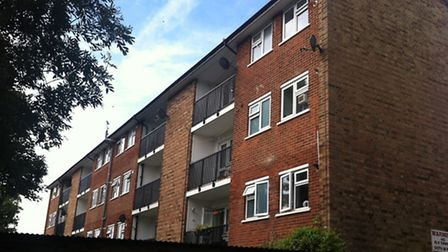 The 20-year-old woman fell from a balcony on the top floor of Ray Court