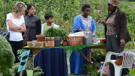 Organic food growers at the Goodmayes Allotment Open Day