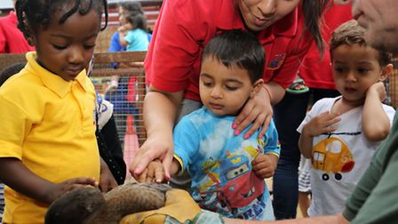 Grace, three, Hassan, two, and Arif, two, get close to a duck