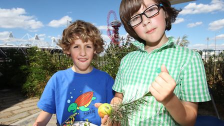 Brothers Michael,six, and Joseph Arnold-Sudbery, nine, learn about wild fruits at the fun day organi