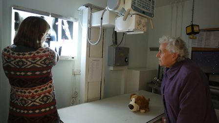 The tour of the animal hospital showing the xrays