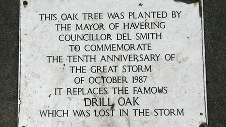 """A plaque at the Drill roundabout in Gidea Park commemorates the """"Drill Oak"""", which was felled in the"""