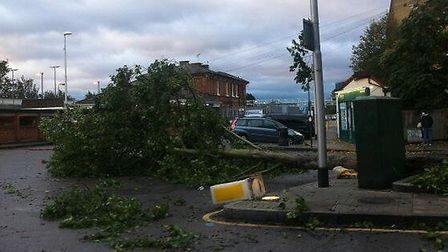 A tree down outside Woodford Station this morning (pic: Kate Nelson)
