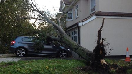 A car is crushed by a fallen tree in Rush Green Road, east London. Picture: @ClockEndCav