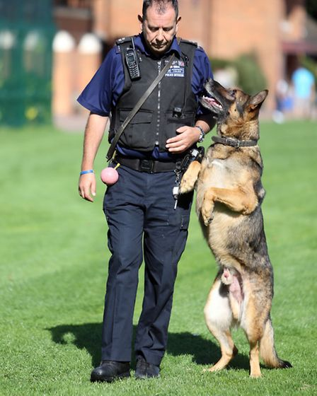 MET police fun day at Bancroft's school in Woodford Green. Police dog display