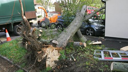 Cars damaged by fallen trees in Rush Green during St Jude storm in October.