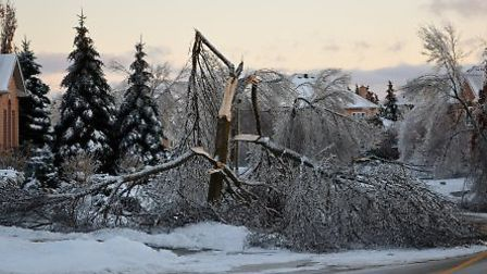 The Greater Toronto area was hit by the most severe ice storm since 1998. Frosty temperatures and sn