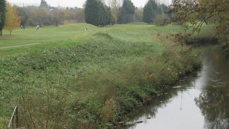 The River Roding near Ilford golf course, with Pioneer Point in the background. Picture posted to iw