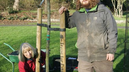 Anne Hoad and Jesse Lock replace the vandalised tree