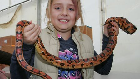 Ellie Cook age 7 with a snake