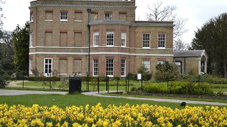 The daffodils were planted outside the mansion, where the popular BBC show has pitched its tents. Pi