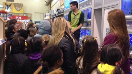Staff at Pets at Home taught the 1st Beckton Brownies about caring for animals