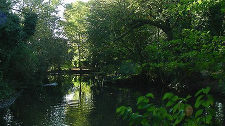 The moat in Clockhouse Gardens. Picture: John Winfield