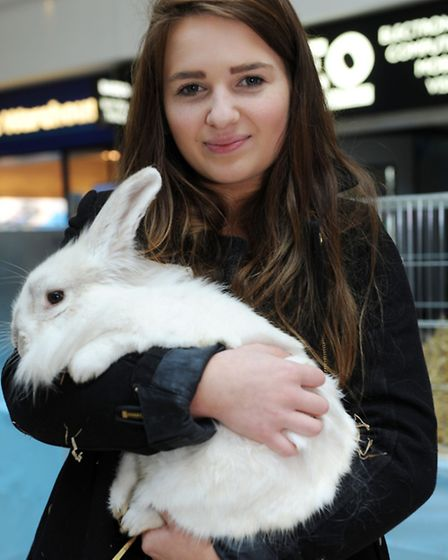 Lily Moore, 16, holds a rabbit at the Stratford Centre
