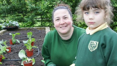 Sue Banks and Emma Nedelchen planting Cabages in the food garden