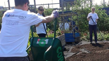 Staff from CEB gave up their day to help Canning Town residents grow vegetables as part of a communi
