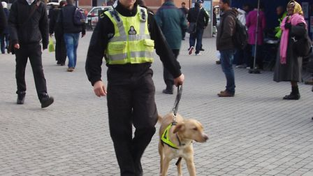 ON PATROL: Drugs dogs were deployed as part of a crackdown on crime at Stratford station