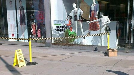 The bees outside Topshop and Monsoon in Victoria. (Photo: Farah Ahmed)