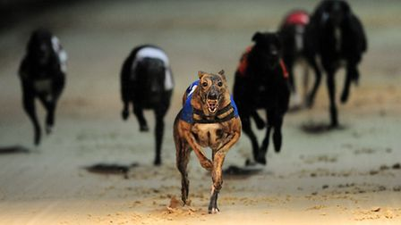 The attack was at the Romford Greyhound Stadium. Picture: Press Association/Joe Giddens