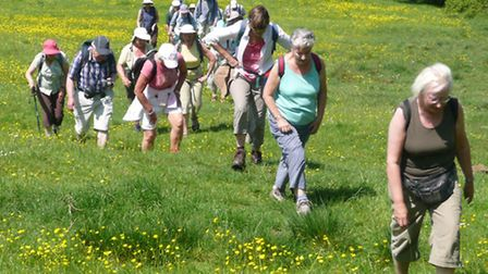 West Essex Ramblers. Picture: Ray Latham