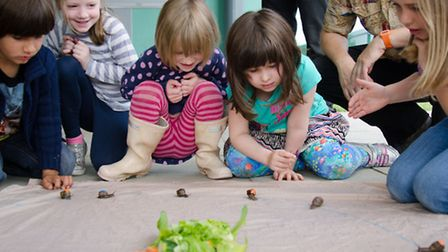 The Wren Conservation Group's childrens nature club racing snails. Picture: Wren Conservation Group