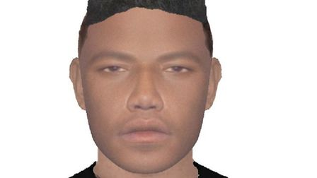 Police have released this e-fit of the suspect