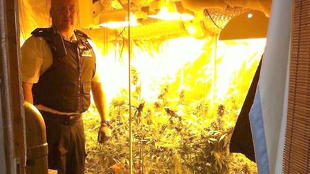 An officer with the 40 cannabis plants. Picture: Met Police