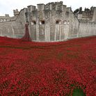 Bob Paice was among hundreds of volunteers who planted ceramic poppies at the Tower of London Pictur
