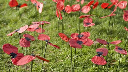 Poppies made by students at Drapers' Brookside Junior School