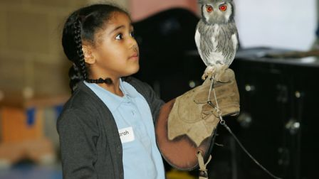 Sarah with a white faced Scops Owl