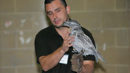 Jason Ashcroft with a Tawney Frogmouth