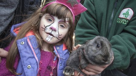 Four-year-old Abigale Rice meets a real-life Easter bunny at Gallions Reach Shopping Park