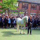 Tansy the pony from the Chigwell Riding Centre for Special Needs visited Bancroft's Preparatory Scho