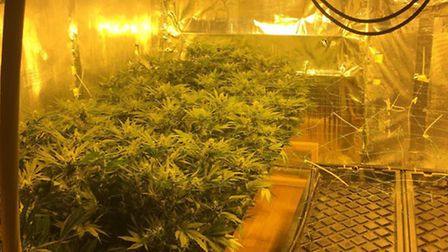 £30,000 worth of drugs were discovered and seized