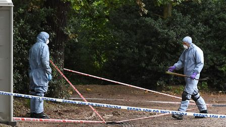 Police forensic teams searching Epping Forest by Hollow Ponds following the discovery of the body of
