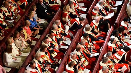 Peers in the House of Lords. Picture: Ben Stansall/PA Images