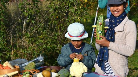 """Youngsters enjoying Forest Farm Peace Garden's """"Abundance Day"""". Ron Jeffries"""