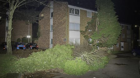 Storm Barney hits Hornchurch Picture: Barry Jones