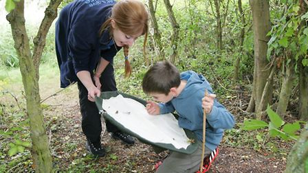 Enjoy the great outdoors this half term