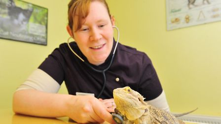 Vet Catherine Thomas has set up a mobile exotic pet service. She will be doing regular surgeries at