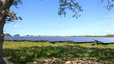 Pyworthy solar farm is an example of what solar parks proposed for Havering could look like.