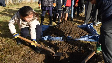 A young pupil from South Park Primary School planting an orchard
