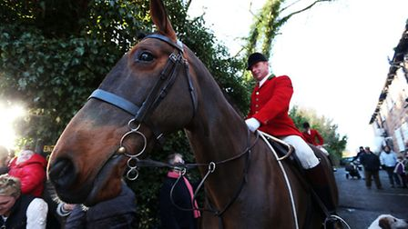 Fox hunting was outlawed in 2004.