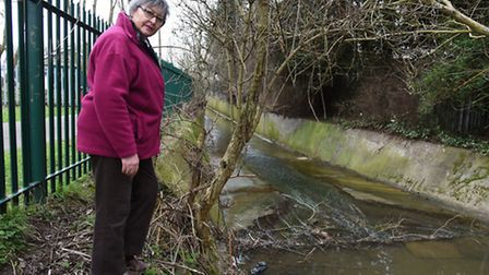 Environmentalist Lois Amos by the River Rom in the Collier Row Recreation Ground
