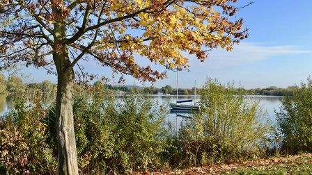 Fairlop Waters Country Park. Picture: Ron Jeffries