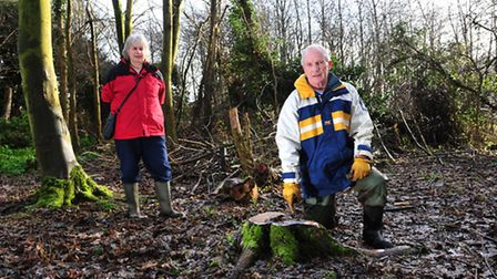 Trees have been felled and stolen from Bonds Meadow. Peter Aldous and Margaret Martin by the damage