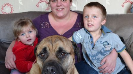 The Rowan-Locke family with their beloved pet dog Frank, who needs an operation. Picture: IAN ROBB.