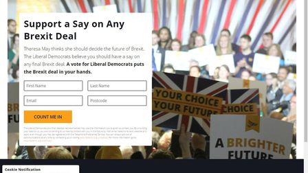Liberal Democrat dark adverts in Leyton and Wanstead stuck to core campaign messages about Brexit