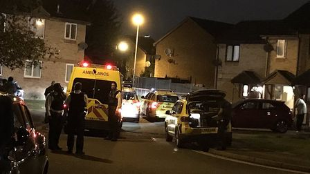 Police were called to reports of a stabbing in Pittman Gardens, Ilford, at around 10.30pm last night